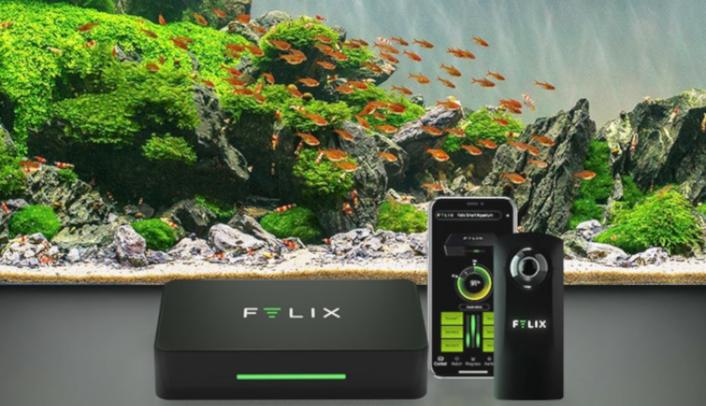 Felix-Pro_Homeslider